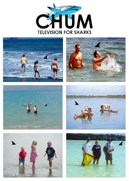 CHUM: Television for Sharks