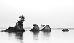 Meditation Rocks (Deej6) Tags: trees bw oregon coast high key pacific northwest minimal zen d80 mywinners aplusphoto platinumheartaward tokina1116