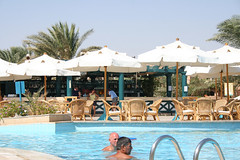 Pool Bar (Adele Liu) Tags: summer vacation resort egitto  clubmed watersport elgouna  villaggio   egypet