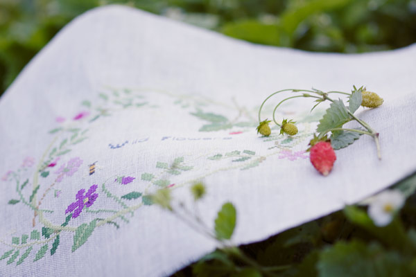 Wild Flowers (Kazuko Aoki)