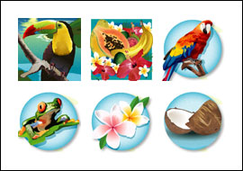 free Triple Toucan slot game symbols