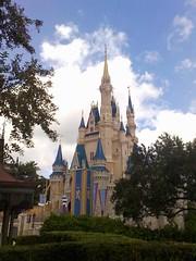 at magic kingdom
