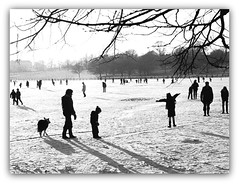 Knavesmire YORK Frozen (robin denton) Tags: york snow cold ice frozen skating silhouettes contrejour knavesmire contrejoure