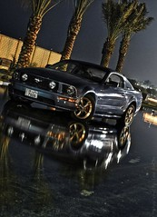 Mustang (Talal Al-Mtn) Tags: blue horse ford rain power hd kuwait fordmustang 2008 v8 kuwaitcity 2007 mustanggt q8 kwt fordmu