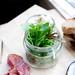 Jar Salad