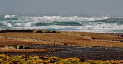 Wintry Shores IMG_0404 (Ronnierob) Tags: stormyseas quendalebay