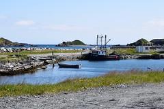 Fishing Boats in Ferryland, Newfoundland