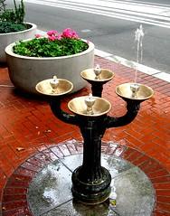 Be Different (malfunctioning Benson Bubbler, downtown Portland, Oregon)