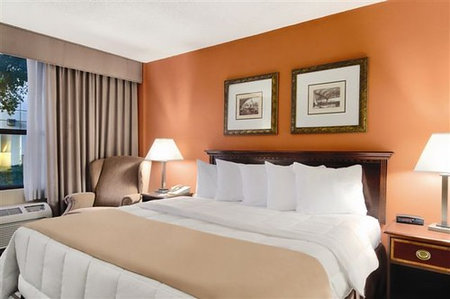 Best Western Dallas Hotel and Conference Center - King Guest Room