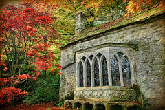 The Gothic Cottage, Stourhead (sminky_pinky100 (In and Out)) Tags: old uk autumn red england orange heritage texture tourism gardens gold maple pretty historic stourhead wiltshire nationaltrust gothiccottage blueribbonwinner personalbest kartpostal bej mywinners omot eyejewel betterthangood ilpibello