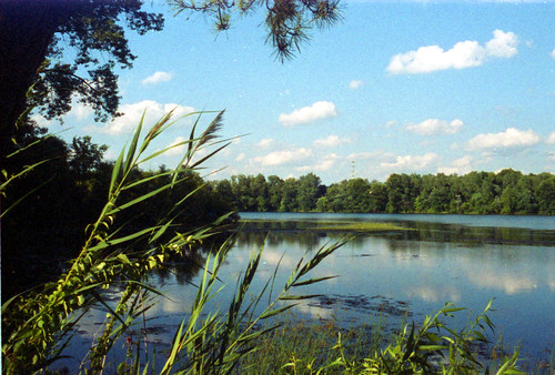 Pentax Auto 110 - Woodland Lake, Pequannock NJ / Scan #2