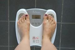 66,6kg