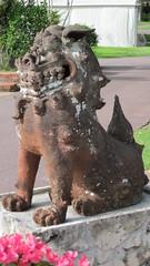D10 (7) (Goose Studios) Tags: dog flower lion folklore okinawa mythology shishi shisa southeastbotanicalgardens shisaa canonpowershotd10