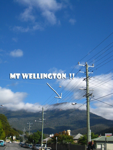 spotted mt wellington on the way
