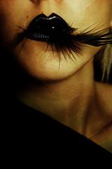 Smog (Tallυlah) Tags: dark goth feather blackfeather blackpencil