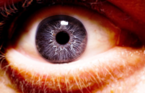 eye macro -  by Dave Frost - Portraiture for the Shy