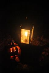 IMG_1028 (lulubrooks) Tags: sleepyhollow jackolanternblaze pumpkinblaze 20091018hudsonvalley