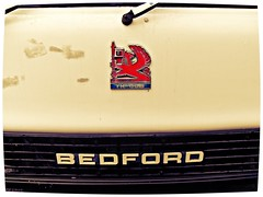 Bedford badges (elstro_88) Tags: classic truck bedford gm bedfordshire lorry badge british griffin gryphon luton vauxhall tk