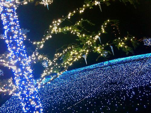 Tokyo Midtown '09 winter illumination 04