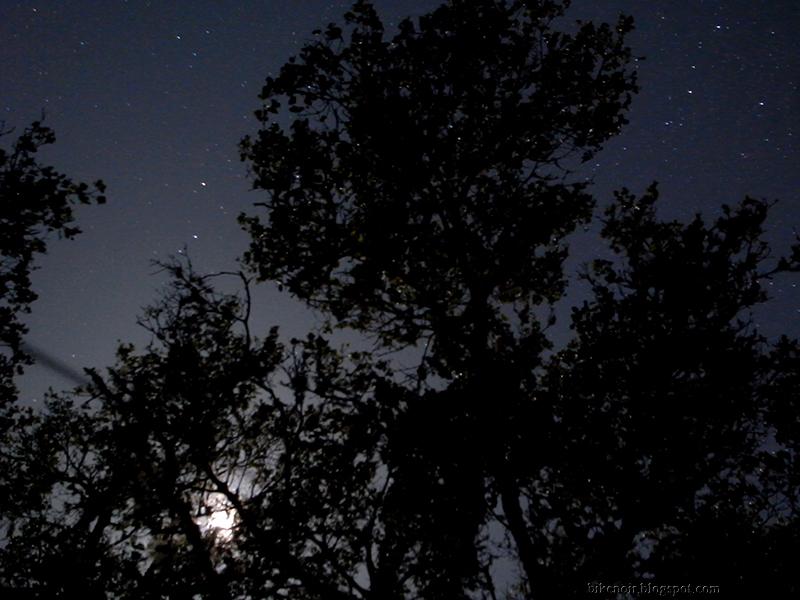 Stars from Mt. Tam