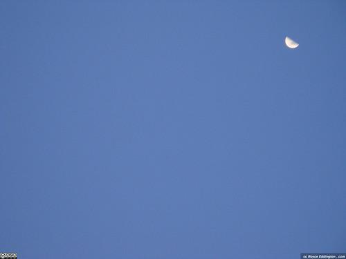 Clear Sky Moon