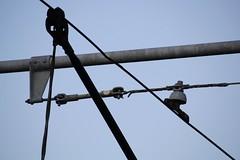 Wires (Danielle Scott) Tags: toronto wires broadview eastofyonge