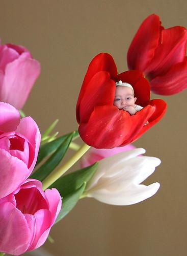 flowerchild 1