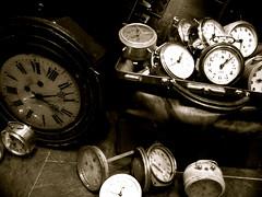 LE LAPIN BLANC..... (fibula5) Tags: course temps lapin réveil