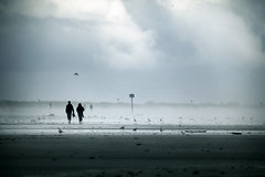 Jour de vent (sparth) Tags: ocean kite beach canon walking washington wind cloudy silhouettes olympicpeninsula windy kites 300mm telephoto pacificnorthwest 300 olympic oceancity pnw plage 2010 cerfvolant 300mm28l 600mm 5dmkii
