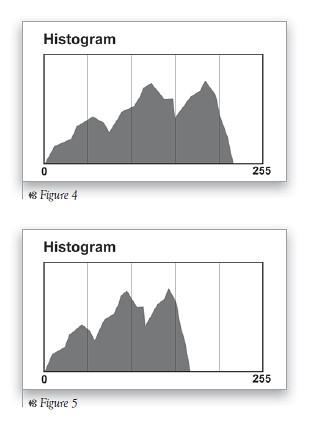 Spot Metering & Histograms