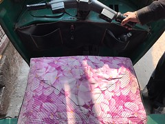 Love Seat (Mayank Austen Soofi) Tags: delhi walla auto rickshaw love seat driver flower