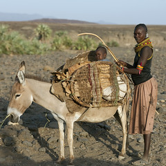 Turkana mother and baby with a donkey - Kenya (Eric Lafforgue) Tags: africa people baby kenya mother culture donkey tribal tribes afrika bebe tradition tribe ethnic mere kenia tribo afrique ethnology tribu eastafrica 6614 qunia lafforgue ethnie ethny  qunia    kea    a