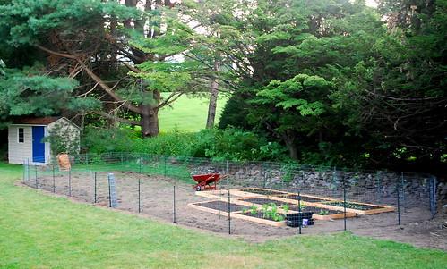 building garden fence 2
