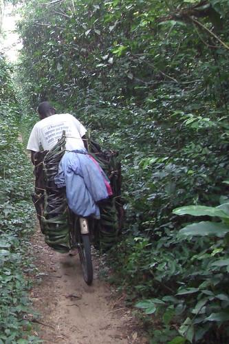 bushmeat-bicylce