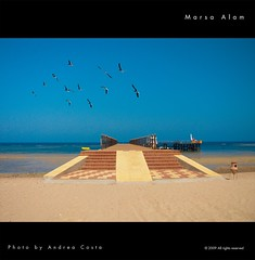 Marsa Alam sea (Andrea Costa Creative) Tags: desktop sea wallpaper holiday macro building tree art beach nature water closeup architecture illustration photoshop canon painting creativ