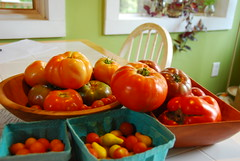 Tomatoes from My Garden (Loopy Dolls) Tags: stilllife garden tomato virginia tomatoes vegetable produce reds hierloom