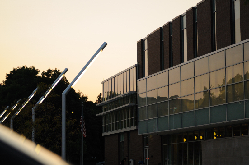 Library at Dusk 1