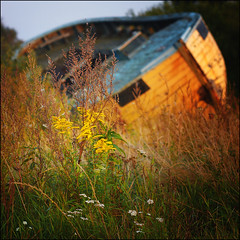 The autumn is comming (Swiatlocien) Tags: sea field boat focus soft sailing large poland polska fisch monocle droga helios rewa batyk chmury niebo kutry kuter helios40