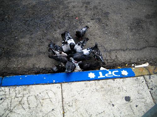 Pigeon Street Food