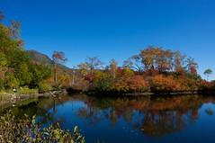 エゾ沼から緑岳を望む