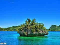 Caretakers (junsjazz) Tags: trees sea sky mountains nature fun island philippines surigao potofgold pinoykodakero teampilipinas junsjazz litratistakami