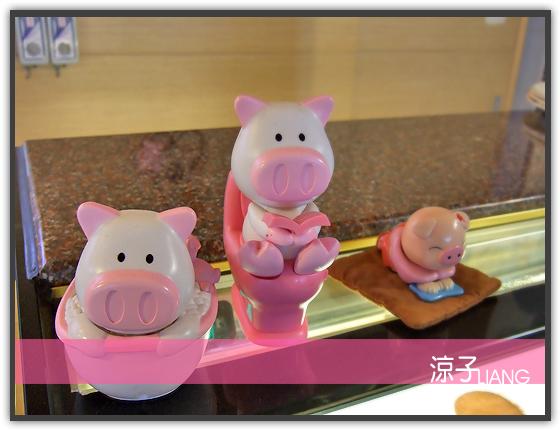 三芝小豬05