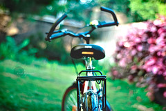 .Come..ride.with.me. (.krish.Tipirneni.) Tags: trees india green home grass bike bicycle garden handle 50mm back nikon ride bokeh seat cycle ap hero type come hyderabad backseat hpc hyd telugu andhrapradesh secunderabad d80 ridewithme rktobjects manilikesit comeforaride oct15thworldchildlossawarenessday