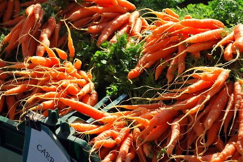 Sunlit Carrots