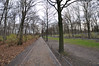 Bike Path Through Tiergarten