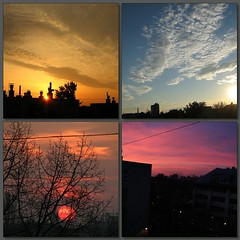 Four are dawn miracles.