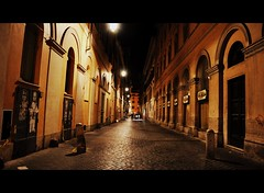 Alley at night (Violet Kashi) Tags: street italy rome night lights alley nikon kashi d90