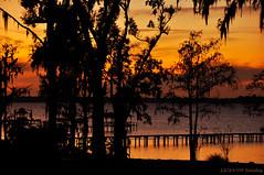 Florida Silhouettes (Saildog Photography) Tags: trees sunset sky orange sun reflection beautiful silhouette clouds river still dock warm peace florida horizon peaceful stjohns jacksonville fl jax happynewyear 2010 stjohnsriver northflorida cloudage saildog goodbye2009