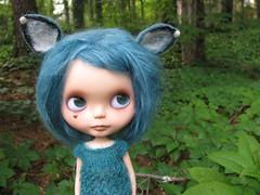 129/365 Wild in the woods