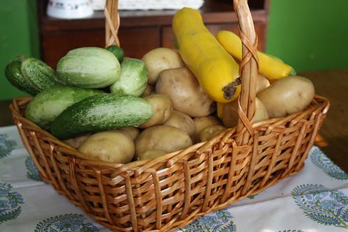 Farmer's Market Produce 6/11
